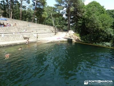 Pinares de Piedralaves;ruta cercedilla rio alberche madrid cañada real segoviana